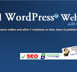 best professional website designs in Singapore Australia India Worldwide