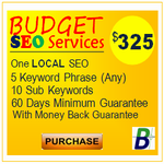 affordable budget seo services
